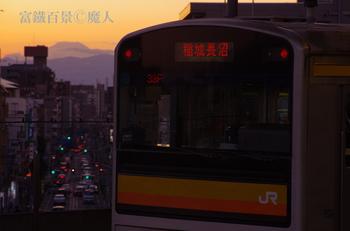IMGP1170.JPG